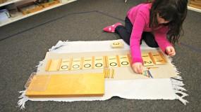 Montessori Primary (3 to 6 years)