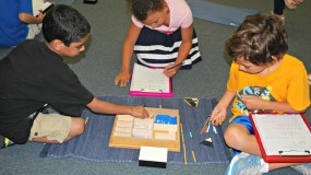 Montessori Elementary (6 to 12 years)